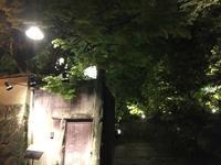 京都東山の古いお屋敷でイタリアンを頂きました。 - 寿司陽子
