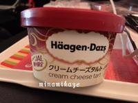 クリームチーズタルトアイスクリーム - みなみかぜの香港でお菓子教室♪