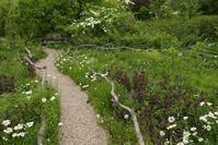 花フェスタ記念公園に行く 5 〜 ターシャチューダの庭をあとに  - mypotteaセンチメンタルな日々  with photos 2