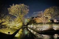 京都夜 - ふくろほーのつぶやき