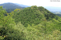 新緑の山を訪れて - 虫籠物語