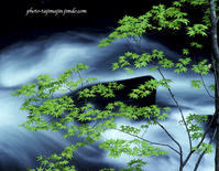 近隣の山と渓谷-2 - Photo Tajima~フィルム&デジタル