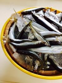 小鮎の甘露煮 残念な結果 - refresh-3