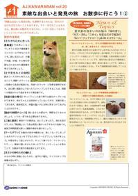 愛犬家住宅 太陽ハウス 松戸 - 新松戸 建築 「創ってます!」太陽ハウス