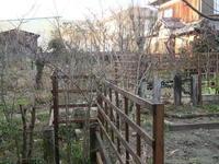 3月11日の草遊庭さん - あっち!こっち!どっち?