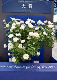 国際バラとガーデニングショウ ④ - 小さな庭 2