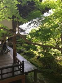 京都に行ってきました① - シニョーラKAYOのイタリアンな生活