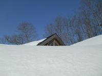 雪の回廊手前まで@春のメモリー - Tea Wave  ~幸せの波動を感じて~