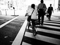 横断歩道 - 節操のない写真館