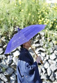 初めての、日傘。 - 「む一ちょ写真日記」