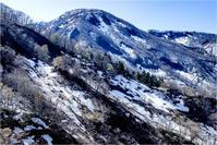 小谷村の遅い春 - 光のメロディー