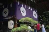 東京大神宮 - 写真日記