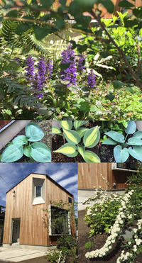 石神井U邸 春のお庭の様子 - kukka kukka