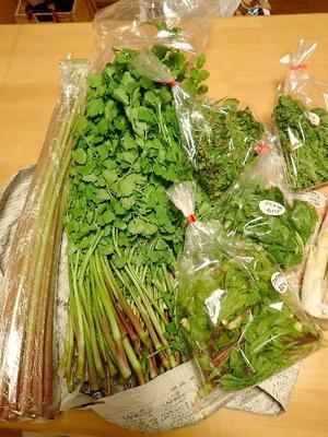 春の山菜祭り~♪ - 楽子の小さなことが楽しい毎日