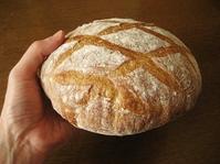 有機発芽キタノカオリのカンパーニュ - slow life,bread life