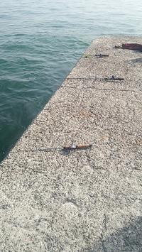 GWの釣り… 明石の釣り@ブログ - 明石の釣り@ブログ