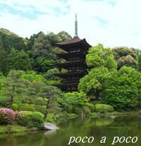 美しい! 瑠璃光寺の五重塔 - ぽこあぽこ的生活