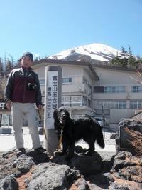 富士五湖周辺へ Ⅲ・・・ - Genki DaysⅡ
