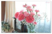 母の日に。 - Yuruyuru Photograph