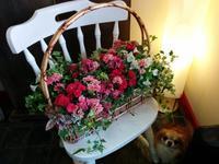 母の日☆彡 - aile公式ブログ
