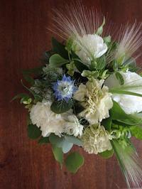 母の日 - 暮らしと植物のブログ