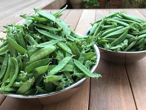 どっさり - ズッキィの野菜畑