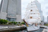 横浜みなとみらい帆船日本丸 - 年年歳歳写真と共に