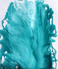 新作 Summer Blooming - Bleu Art