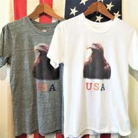 メイプル NEWベーシックTee EAGLE - BEATNIKオーナーの洋服や音楽の毎日更新ブログ