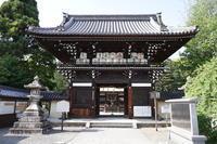「あやめとひつじとシマ」 -梅宮大社- - 心ざわめく街  -あらうんど京都-
