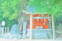 一宮神社の狸 - 愛姫伝