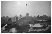 屋上より - BobのCamera