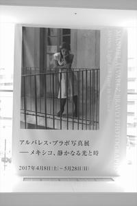 写真展 - Photo-En ~ゆるりフォトライフ