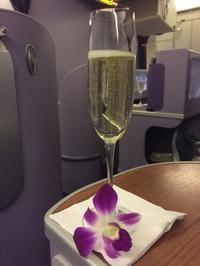 機内食 タイ航空934便 バンコク→ブリュッセル - Voyage et CinemaⅡ
