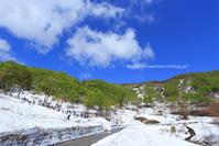 残雪と新緑の鍋倉高原と鍋倉山 - 野沢温泉とその周辺いろいろ