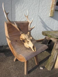 朝陽を浴びる主人作・椅子と鹿 - Iターンで・・漁師・猟師の主人と離島暮らし