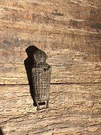 インド コンド族 真鍮像 - MANOFAR マノファー