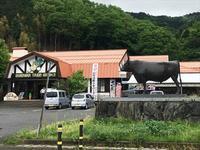 鳥取へ国宝ツーリング 今更大荒れの天気予報と言われたって・・・。 - SAMとバイクとpastime