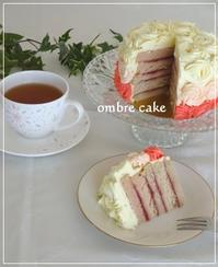 オンブルケーキ☆食べ頃です! - パンのちケーキ時々わんこ
