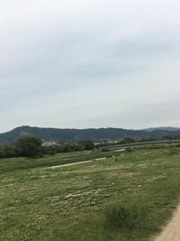 葵祭 - 京都西陣 小さな暮らし