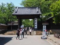 川越 喜多院 - エンジェルの画日記・音楽の散歩道