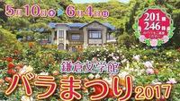 鎌倉文学館のバラまつり - アトリエ A.Y. 洋裁教室