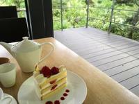 根津美術館と庭園とカフェ - うつわ愛好家 ふみの のブログ
