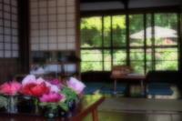 牡丹が彩る懐かしき古民家 - aya's photo