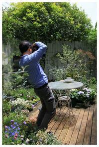Garden&Gardenの撮影 - natu     * 素敵なナチュラルガーデンから~*     福岡でガーデンデザイン、庭造り、外構工事をしてます
