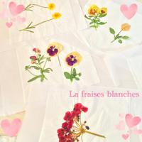 押し花 - La fraises blanches~カルトナージュ&ハンドメイド~