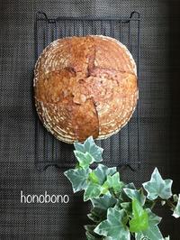 ライ麦ルヴァン種とホシノのカンパーニュ - 流山おおたかの森  天然酵母パン教室  ほーのぼーの