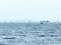 風と一体になったものたちの疾走に | Windsurfing World Cup - 横須賀から発信 | プラス プロスペクトコッテージ 一級建築士事務所