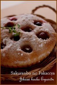 限定レッスン「フレッシュさくらんぼのフォカッチャ🍒」 - 自家製天然酵母パン教室Espoir3n(エスポワールサンエヌ)料理教室 お菓子教室 さいたま