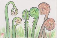 山菜 - 誰でも書ける感動する絵手紙